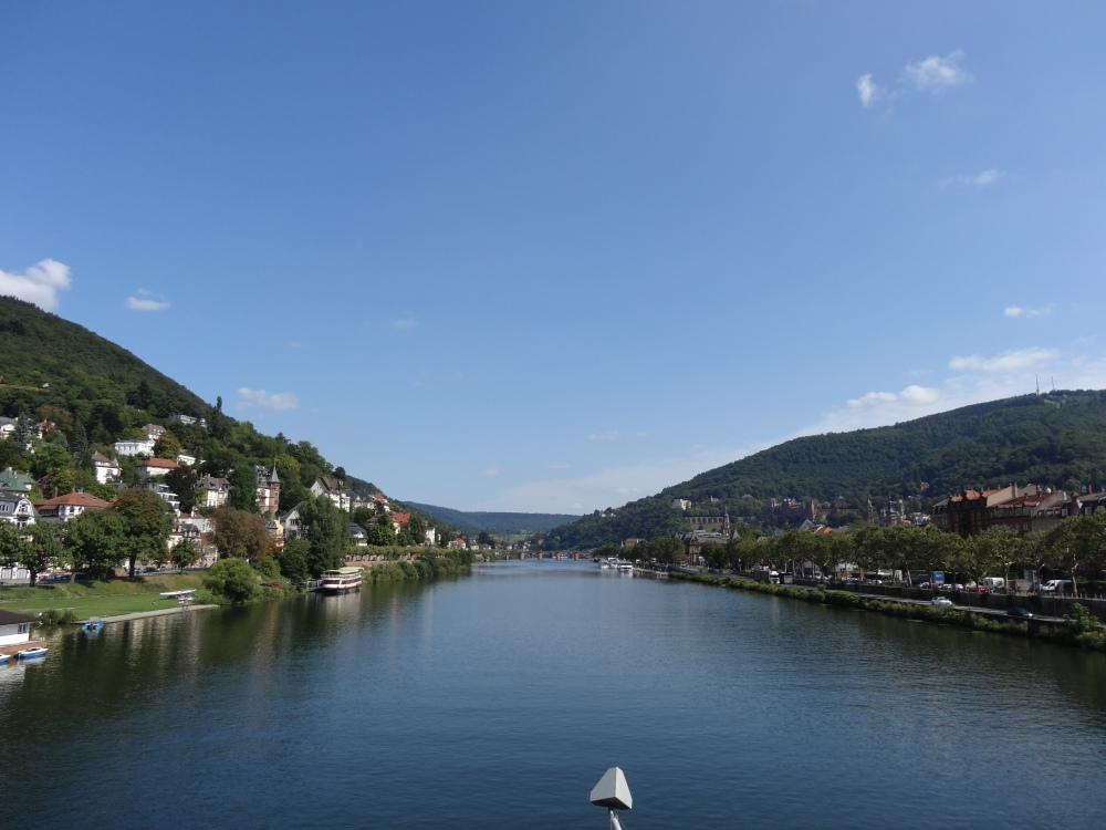 The Neckar river (from the new bridge).